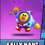 Sally Nani